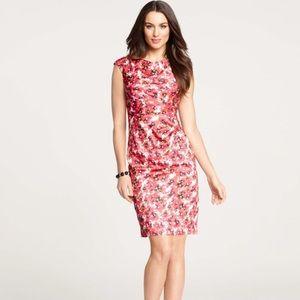 {ann taylor} blossom sheath dress